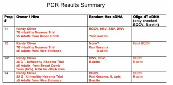 PCR results summary