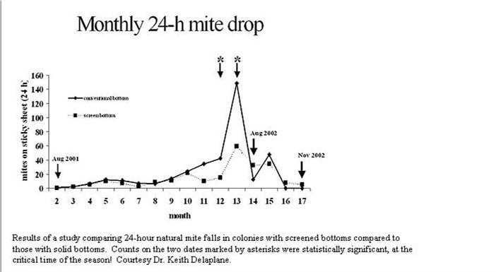 Monthly 24-hr mite drop