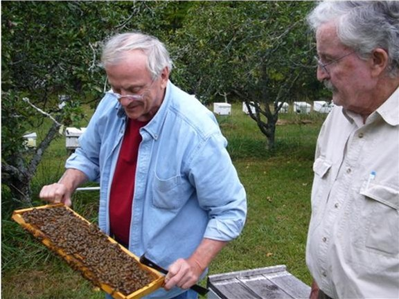 Dr. Tom Rindered and Russian bee breeder Carl Webb at Carl's home apiary